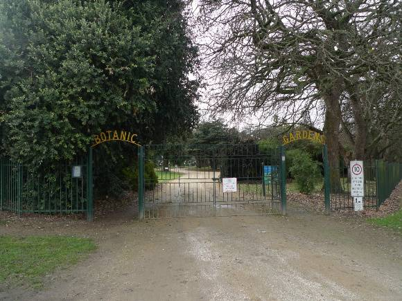 147162_ Colac-botanic_ gardens