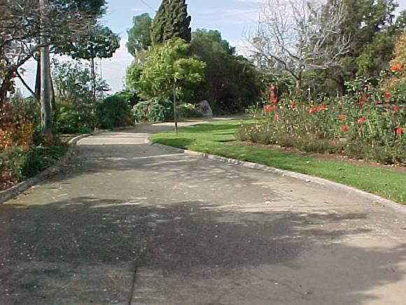 McKay Gardens Entrance Path