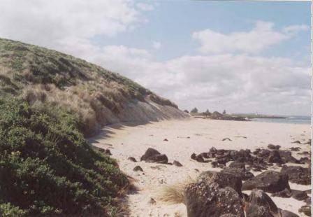 L10276 Griffith Island Sand Dune
