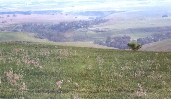 L10294 Barrabool Hills, George's Road