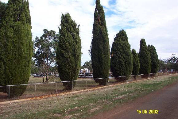 23444 Lutheran Cemetery Hamilton South 0925