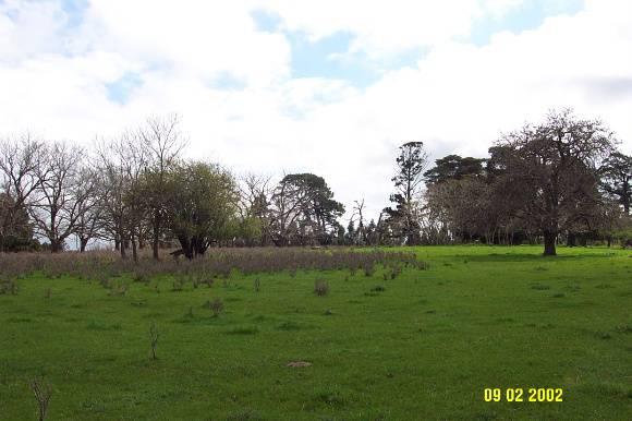 23071 Monivae original site Hamilton Port fairy Rd 1472