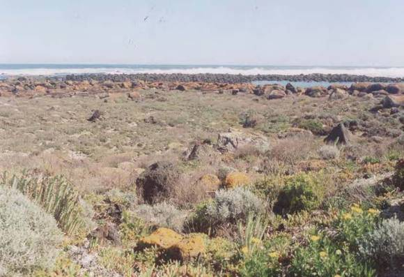 L10276 Griffith Island