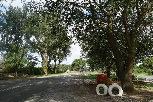 4957_Bacchus Marsh Avenue of Honour_25 December 2009_HV_048.JPG